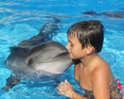 swimming-with-dolphins-at-batumi-dolphinarium-photo-courtesy